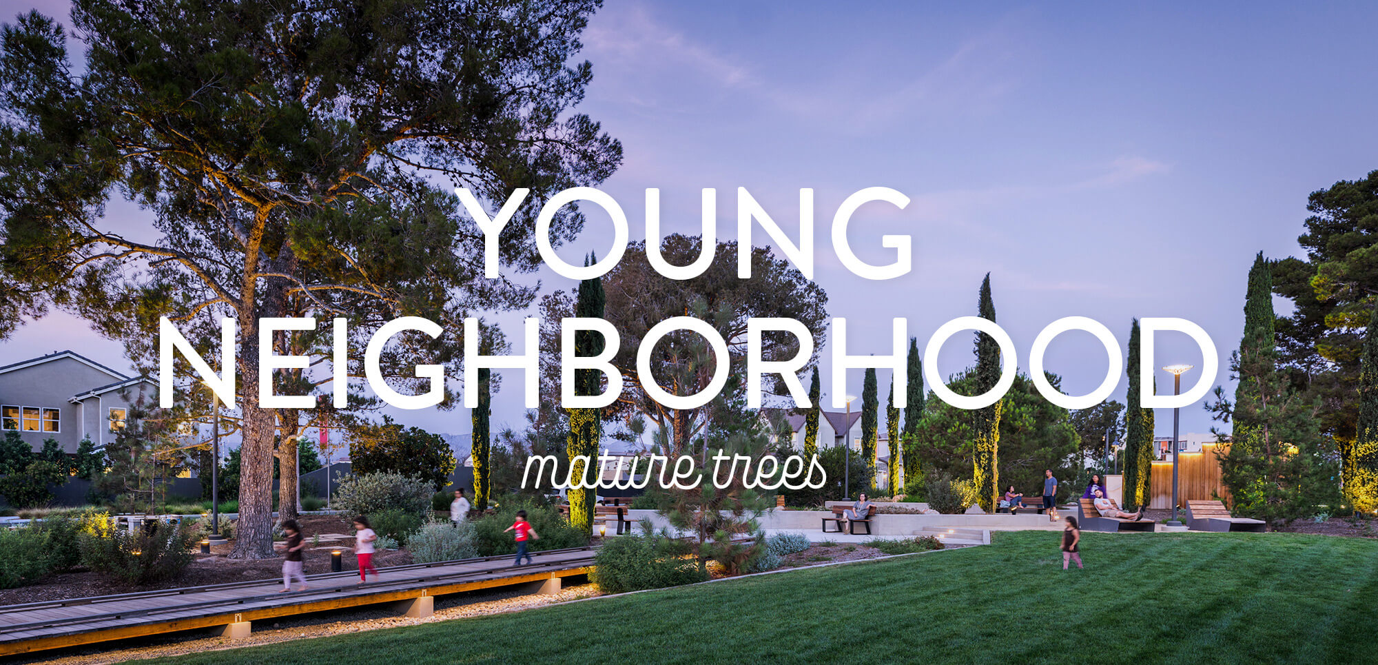 Young Neighborhood Mature Trees